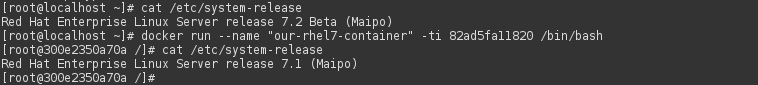 In docker container